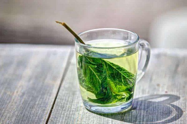 trà thái nguyên, trà thái nguyên tân cương, trà thái nguyên tại tphcm, trà thái nguyên tại đà nẵng, trà tân cương thái nguyên, giá trà thái nguyên chè tân cương thái nguyên gon, trà xanh