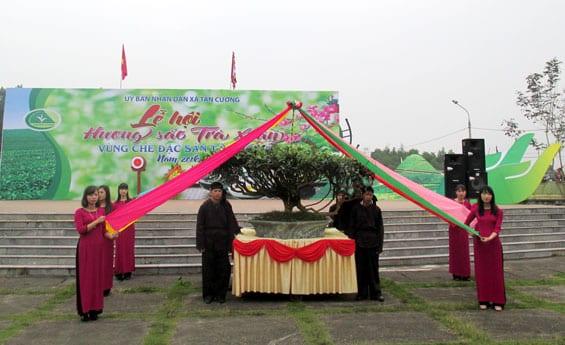 lễ hội trà, festival trà, trà tân cương, trà thái nguyên