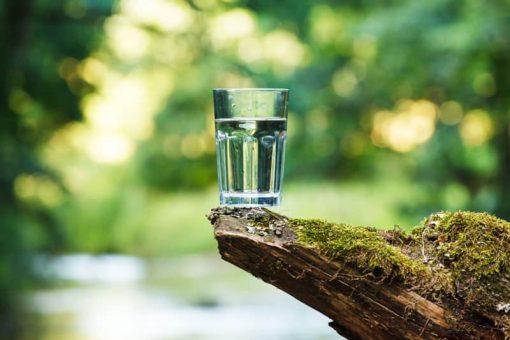 nước pha trà, nước suối, nước sạch