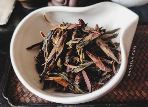 bạch trà tím