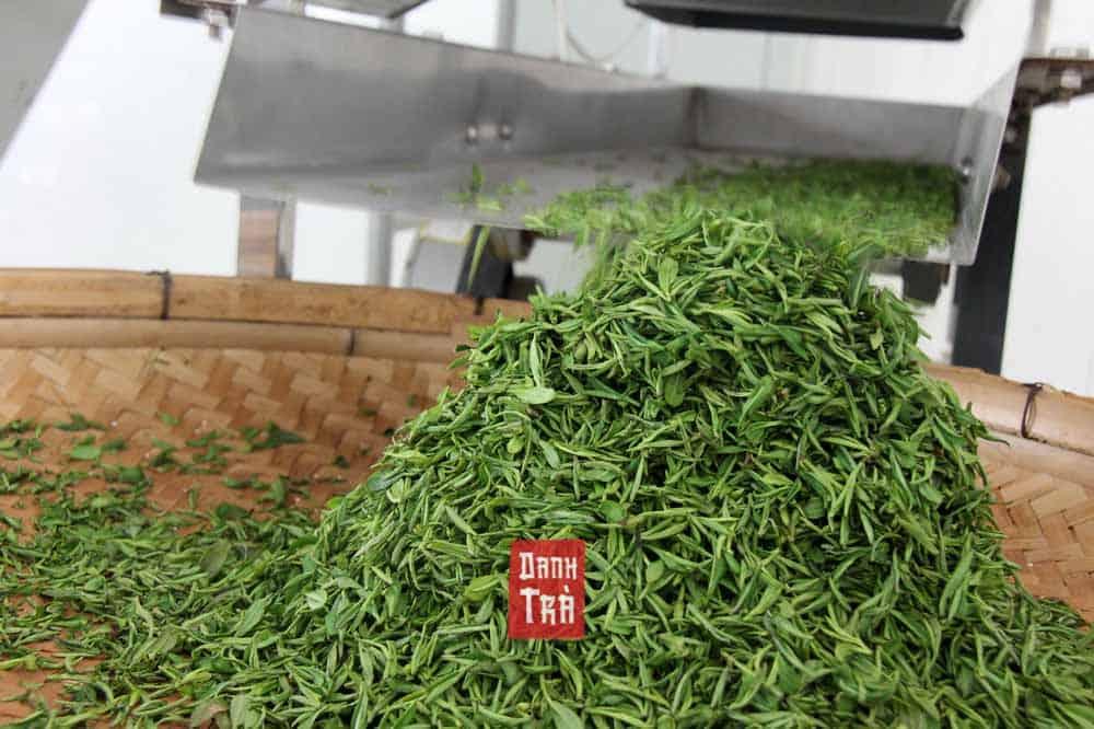 Bán Sỉ Trà Thái Nguyên |Bảng Giá Trà Bắc Giá Sỉ |Giao từ Thái Nguyên 3