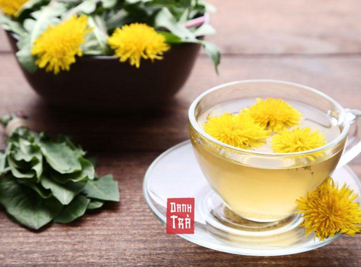 Trà Bồ Công Anh: 5 tác dụng của trà Bồ Công Anh