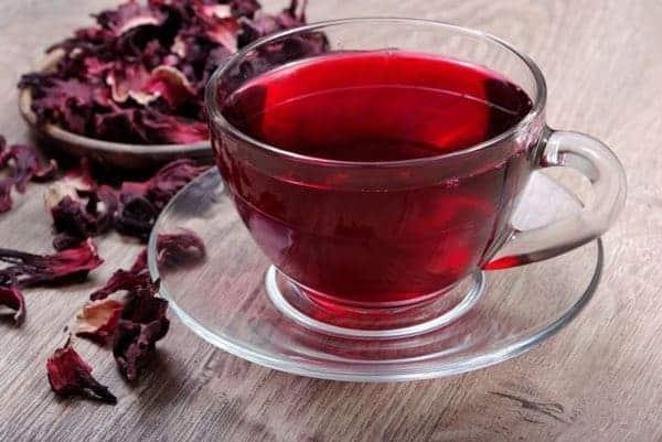 trà bụp giấm, hibiscus
