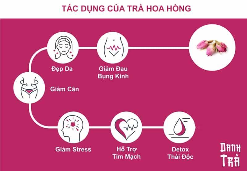 tác dụng của tra hoa hồng infographic